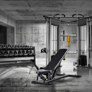 Dual Adjustable Pulley Home Gym Package